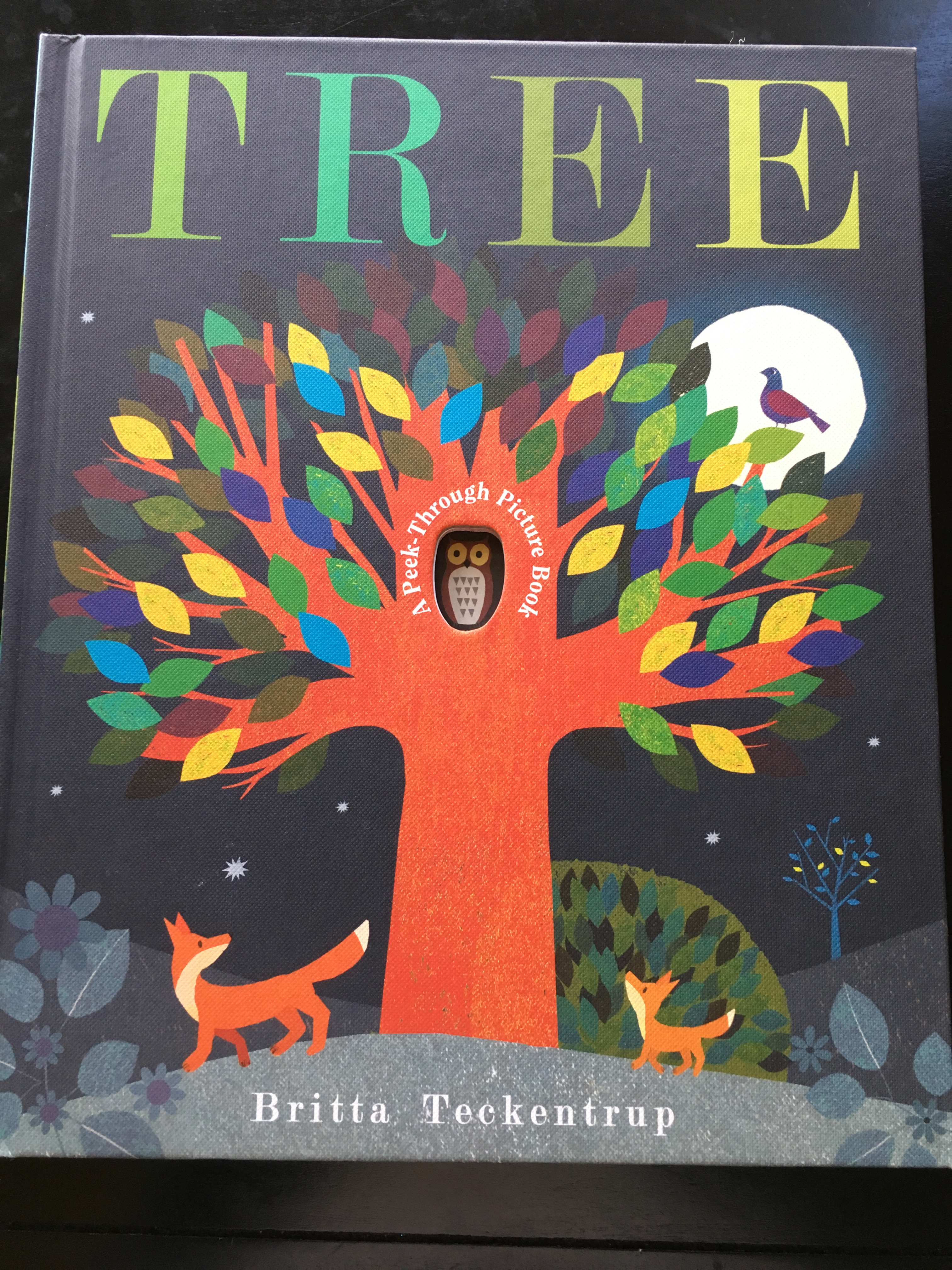 """""""Tree"""" Book Cover"""