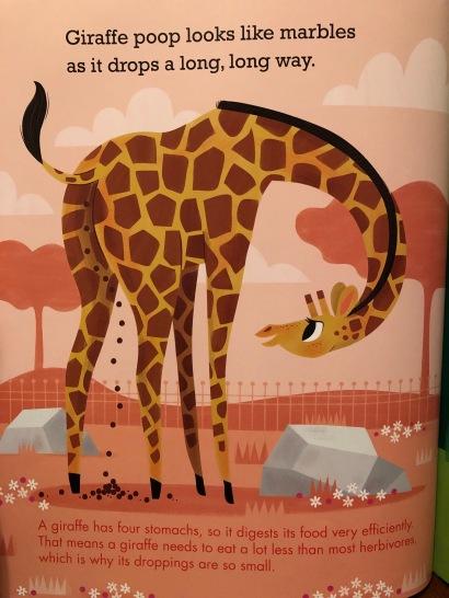 """""""Giraffe poop looks like marbles as it drops a long, long way."""""""